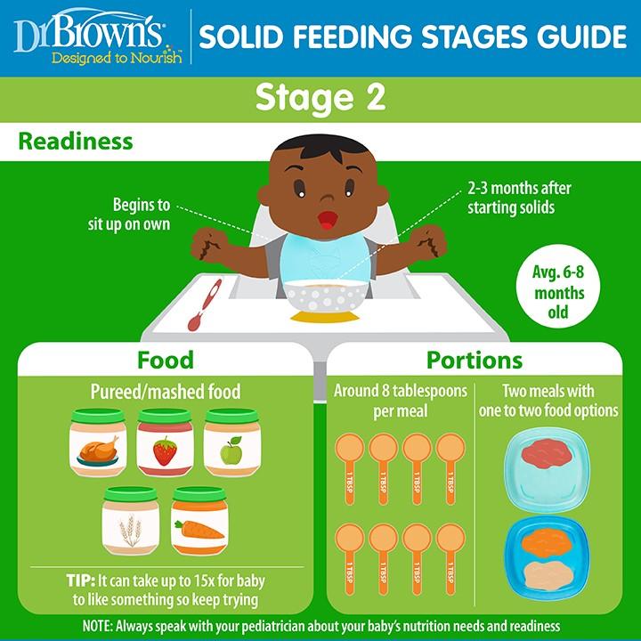 Feeding Baby 6-8 months